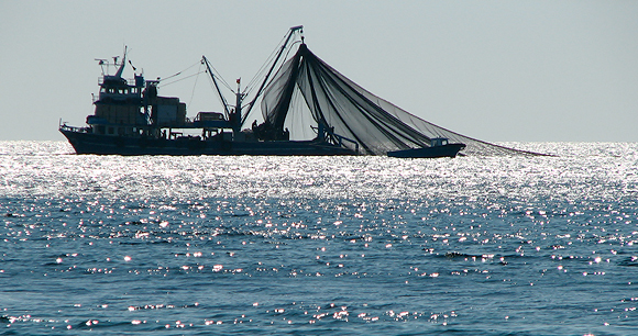 Trawl fishing - Photo by AWI