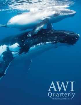 Fall 2014 AWI Quarterly - Cover Photo by Scott Portelli