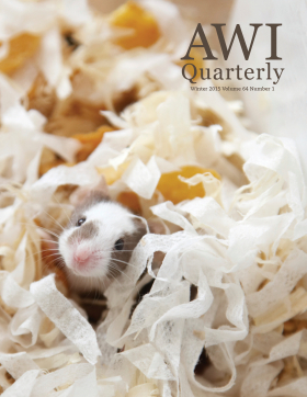 Winter 2015 AWI Quarterly - Cover, Photo by Tirc83