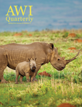 Spring 2014 AWI Quarterly - Cover Photo by Richard Du Toit/Minden Pictures