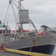Whaling vessel Hrafnreyður offloaded 1.75 metric tons of whale meat on May 11