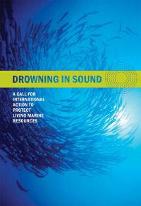 Drowning in Sound Brochure Cover