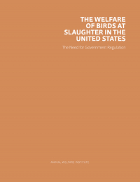 The Welfare of Birds at Slaughter in the United States Cover