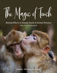 Magic of Touch Cover